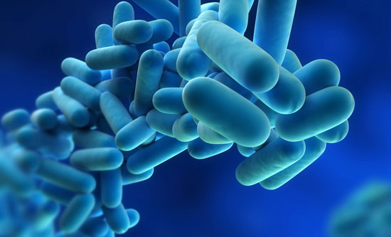 legionella water infection